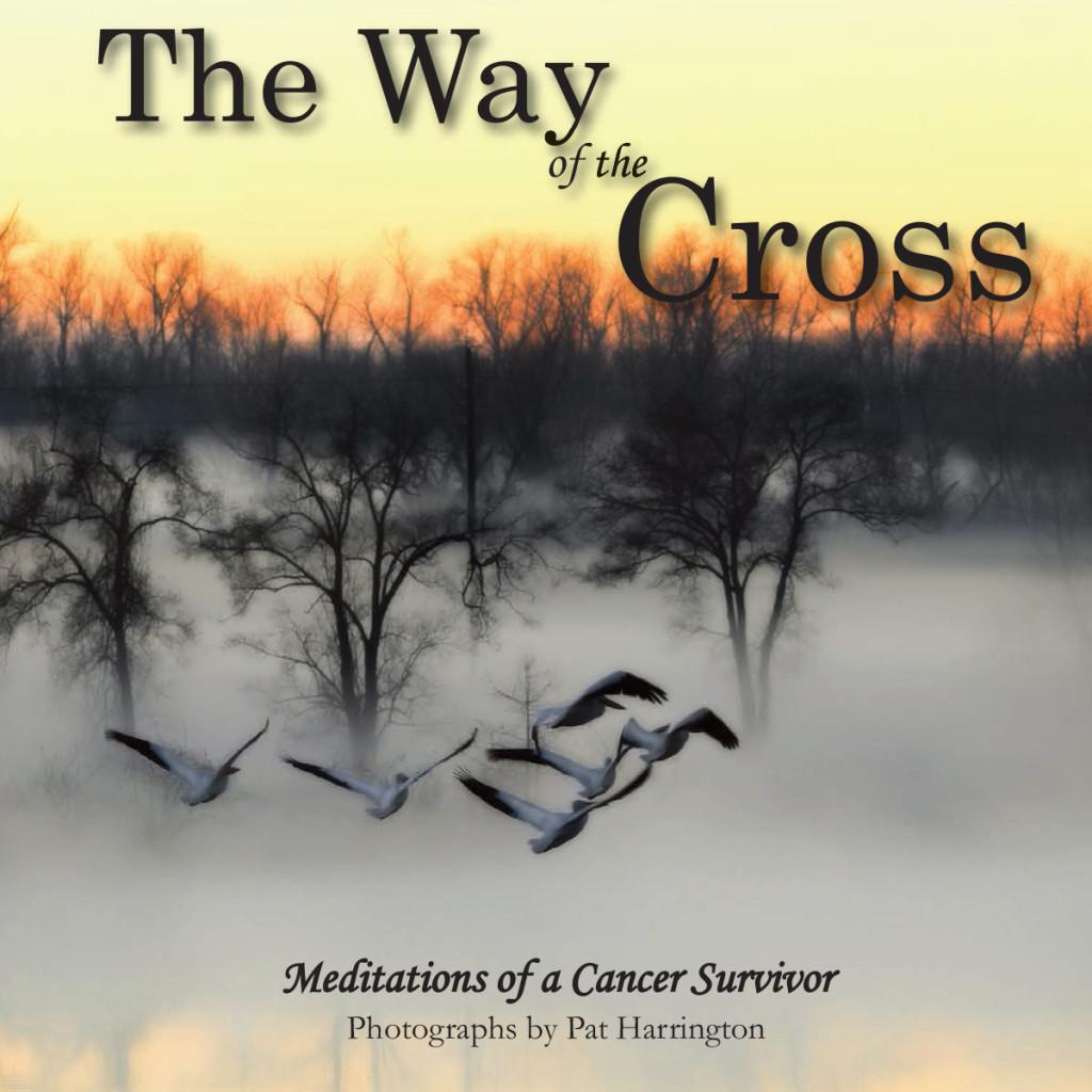Way of Cross Book Cover
